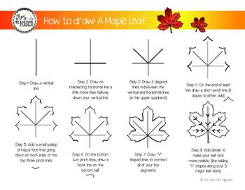 How to Draw: Maple Leaf (Freebie)