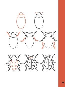 How to Draw a Ladybug!