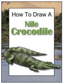 How to Draw a Nile Crocodile