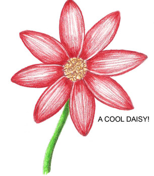 How to Draw a Pretty Daisy!