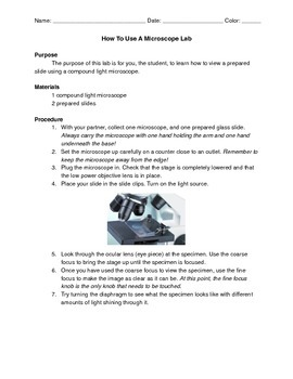 How to Use A Microscope Lab