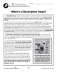 How to Write an Essay: What is a Descriptive Essay? Gr. 5-8