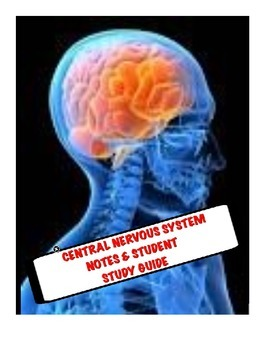 Human A&P Central Nervous System Lecture notes and Student