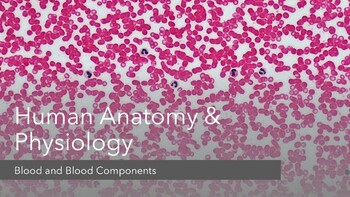 Human Anatomy & Physiology Presentation on Blood and Blood