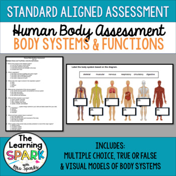 Human Body Assessment