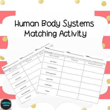 Human Body Systems Matching Activity