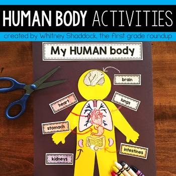 Human Body Mini-Unit