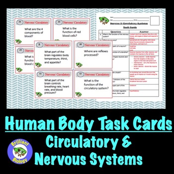 Human Body: Nervous and Circulatory Systems Task Cards
