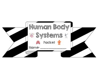 Human Body Notes Packet