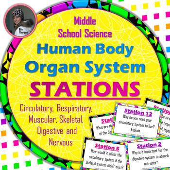 Human Body Organ System Stations