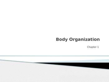 Human Body Orientation Powerpoint