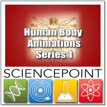 Human Body Powerpoint Animations Series 1