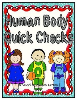 Human Body System Quick Check Slips!