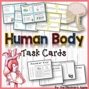 Human Body Systems Task Cards: 2 Sets for Differentiated L