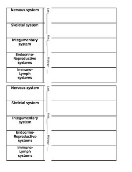 Human Body System Vocabulary and Quiz