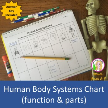 Human Body Systems Chart (function & parts)