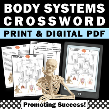 human body systems crossword puzzle for kids