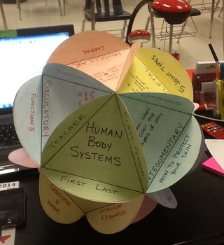Human Body Systems Globe