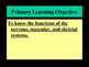 Human Body Systems Part 2 Notes PowerPoint