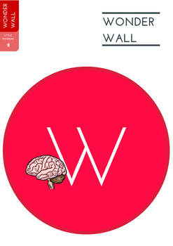 Human Body Wonder Wall Display