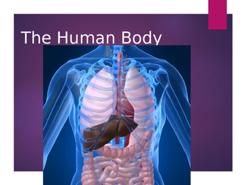 Human Body power Point