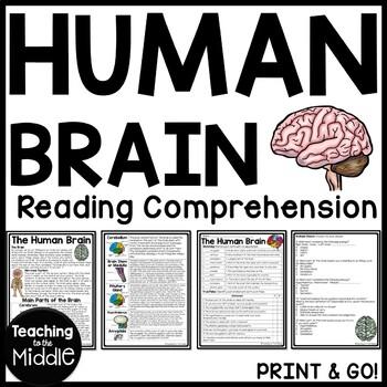 Human Brain Reading Comprehension Worksheet, Science, Body