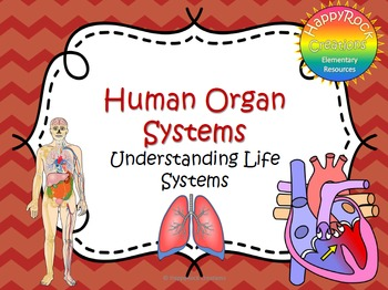 Human Organ Systems Task Cards