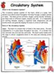 Human Organ Systems Unit