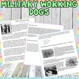 Humane Education: Military Working Dogs Worksheet
