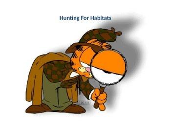 Hunting for Habitats (animations)