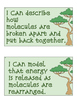 I Can Statements for Ecology