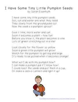 Pumpkin Life Cycle Poem FREEBIE - I Have Some Tiny Little