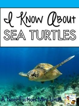 I Know About Sea Turtles: Nonfiction Mini Unit & Graphic O