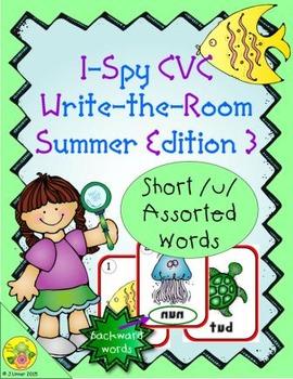 I-Spy CVC Mirror Words - Short /u/ Assorted Words (Summer