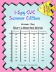 I-Spy CVC Mirror Words - Short /a/ Assorted Words (Summer