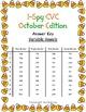 I-Spy CVC Mirror Words - Variable Vowel Words (Oct. Editio