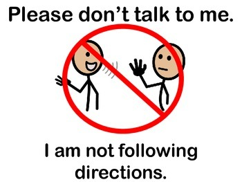 """I am not following directions"" sign"