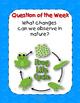 I'm a Caterpillar Reading Street 1st Grade Resource Pack U