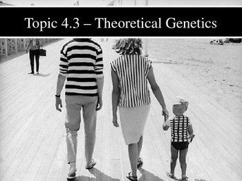 IB Biology (2009) - Topic 4.3 - Theoretical Genetics PPT