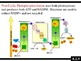 IB Biology (2009) - Topic 8.2 - Photosynthesis HL PPT