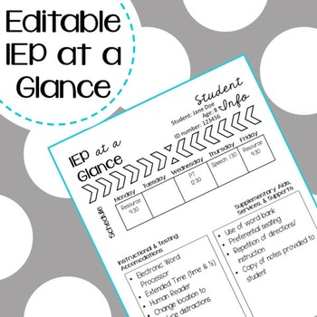 IEP at a Glance Freebie - Editable