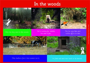 IN THE WOODS: A3 Phonics Poster and  Matching Board. End o