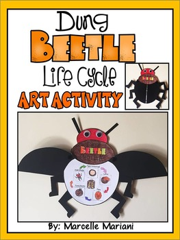 INSECTS-Dung BEETLE-LIFE CYCLE ART ACTIVITY