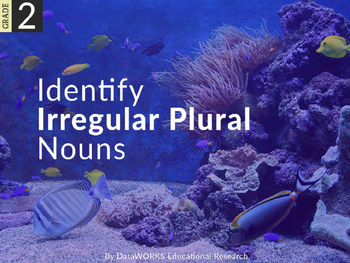Identify Irregular Plural Nouns