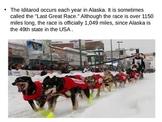 Iditarod - Last Great Race