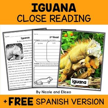 Close Reading Iguana Activities