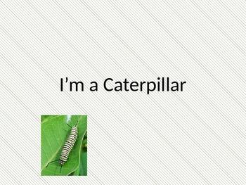 I'm a Caterpillar - Reading Street- day 1