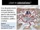 Immigration Causes/Causas de Inmigración for Heritage Spea