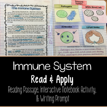 Immune System Reading Comprehension Interactive Notebook