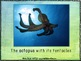 In the Sea – Songbook Mp3 Digital Download